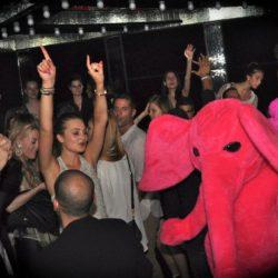 Pink Elephant Club